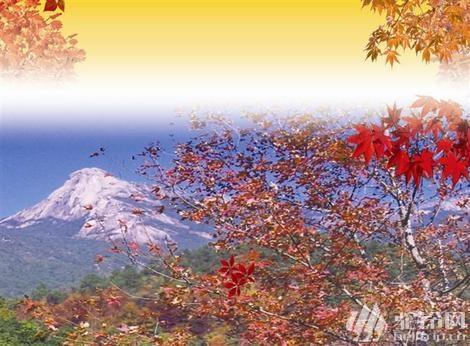 (6)12月3号勇登韶关云髻山,赏满山绝美枫叶-户外活动图-驼铃网