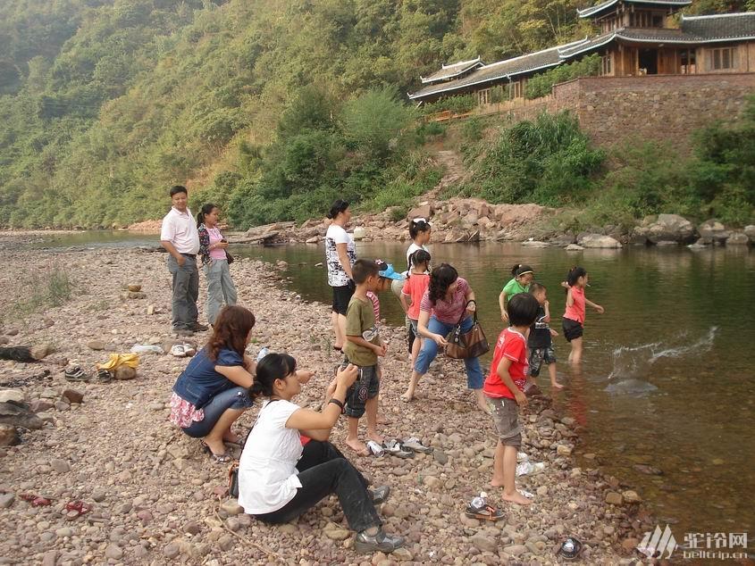 (2)鹿寨古赏河,看两岸杜鹃花,篝火露营。-户外活动图-驼铃网