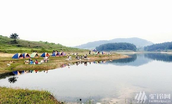 (5)鹿寨古赏河,看两岸杜鹃花,篝火露营。-户外活动图-驼铃网