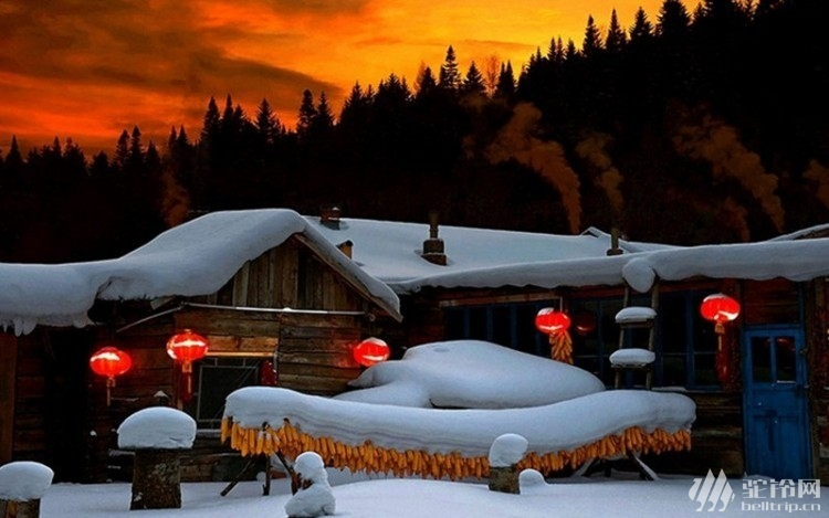 (21)【熊出没雪乡】火车团 元旦1月1-1月3日【雪乡十年经典线路雾淞岛-雪乡雪谷林海雪原-逛冰雪大世界】-户外活动图-驼铃网