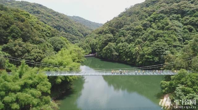 挑战桂山玻璃吊桥,风景区森林探险