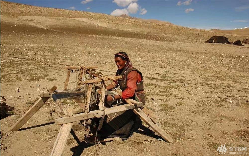 (3)真有22天的时间,你会去西藏吗?7月29号出发-户外活动图-驼铃网