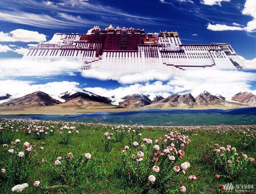 (33)真有22天的时间,你会去西藏吗?7月29号出发-户外活动图-驼铃网