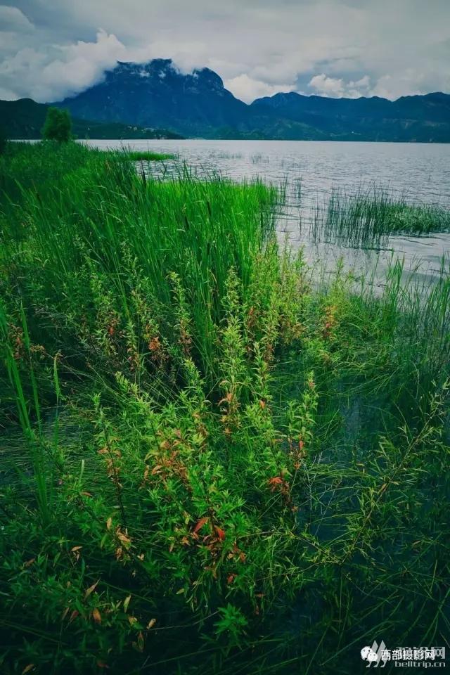 """(14)美美生活之泸沽湖""""在水一方""""四日休闲行摄自驾游活动。。。-户外活动图-驼铃网"""