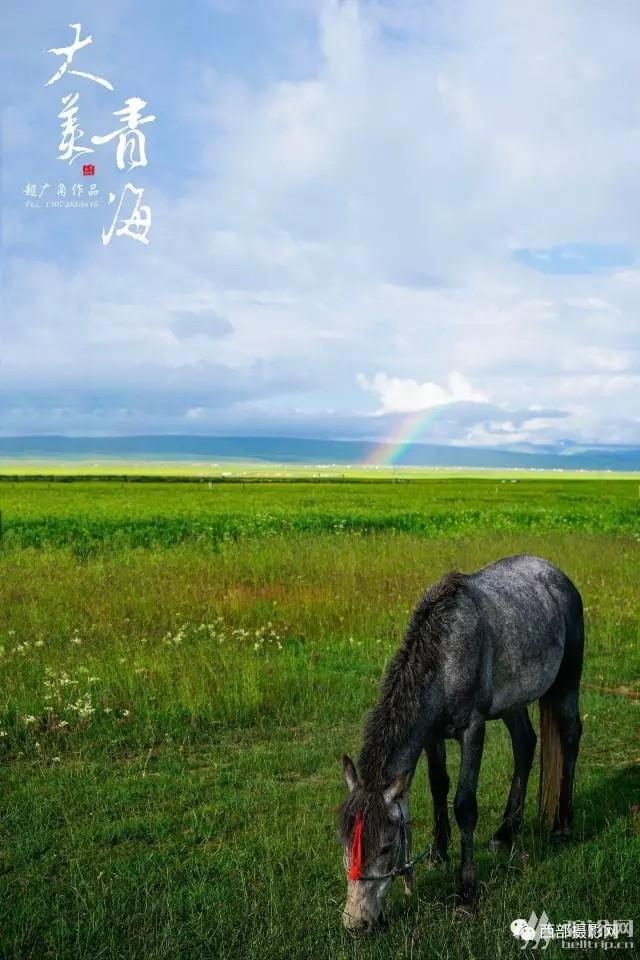 (9)美美生活~大美青海休闲、行摄、采风、自驾活动-户外活动图-驼铃网