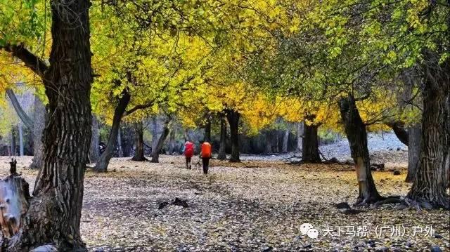 (19)(轻装)行走的美学 行摄新疆醉美古道-户外活动图-驼铃网