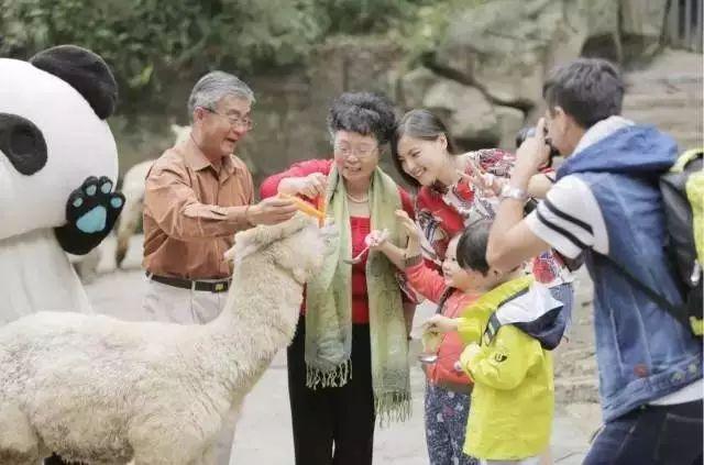 (35)雅安碧峰峡休闲一日游活动-户外活动图-驼铃网