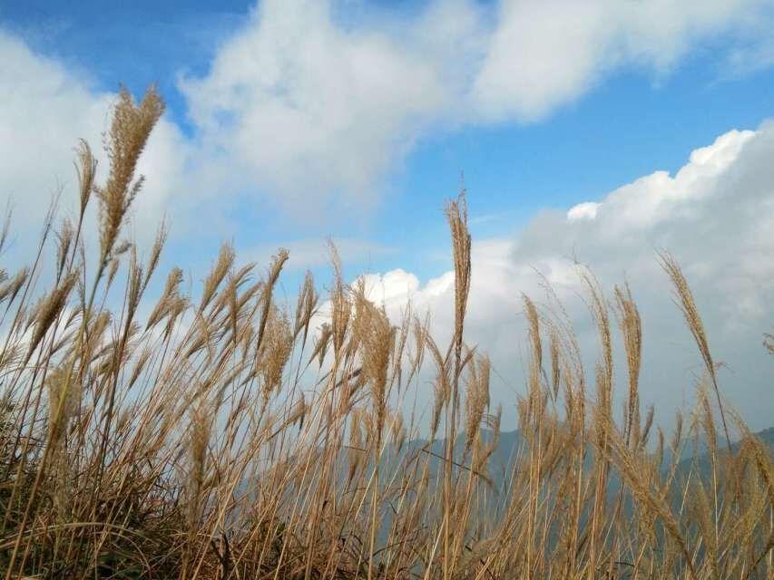 (7)周日14号【1314】一日两峰,双登千米峰,惠阳第一峰白云嶂-户外活动图-驼铃网