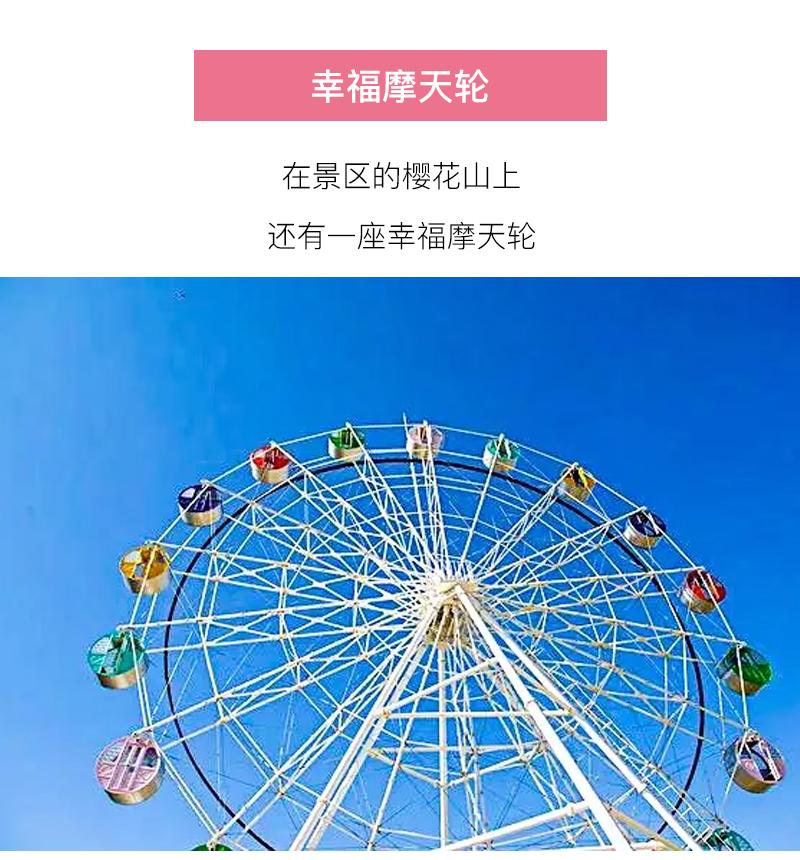 (26)【春节路线】清远佛冈田野绿世界樱花摄影休闲一日游-户外活动图-驼铃网