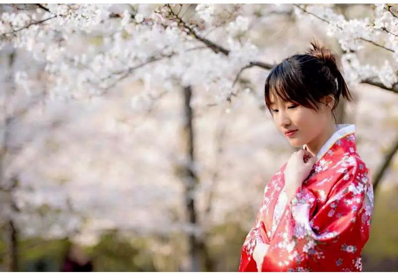 (5)【春节路线】清远佛冈田野绿世界樱花摄影休闲一日游-户外活动图-驼铃网