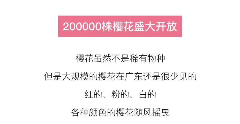 (7)【春节路线】清远佛冈田野绿世界樱花摄影休闲一日游-户外活动图-驼铃网