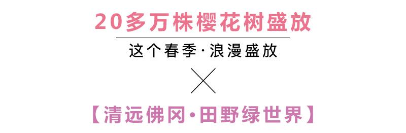 (2)【春节路线】清远佛冈田野绿世界樱花摄影休闲一日游-户外活动图-驼铃网