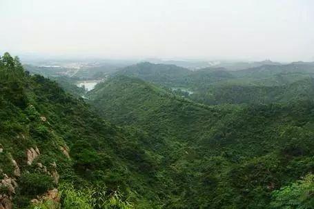 (3)【特惠59】4月1日野线穿越高明茶山,品美味柴火鸡-户外活动图-驼铃网