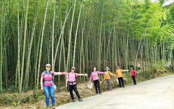 (12)【清明假期】4月5日 逃离盛世喧嚣,快乐徒步之珠罗线18公里徒步-户外活动图-驼铃网