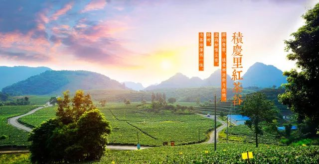 (14)旅拍英德丨6.30 每周六出发,探秘广东最野趣溪谷,行摄中国最美茶谷-户外活动图-驼铃网