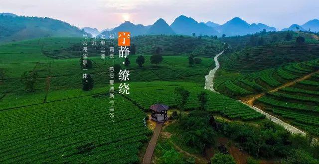 (13)旅拍英德丨6.30 每周六出发,探秘广东最野趣溪谷,行摄中国最美茶谷-户外活动图-驼铃网