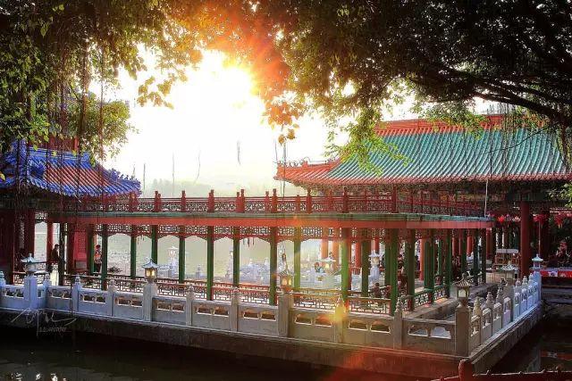 (11)11月3/4日两期船游世界最长的跨海大桥,圆明新园赏奇观-户外活动图-驼铃网
