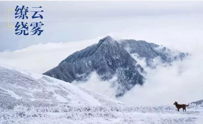 (4)【白色武功山】元旦汽车团 相约武功山 看漫天白雪 赏最美冰挂-户外活动图-驼铃网