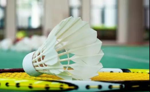 (1)[周二]谁羽争锋 爱羽毛球 活动无限 -户外活动图-驼铃网