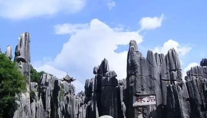 (1)【百花齐放 】美翻了!在广州附近的一个世外桃源,只有走过这些地方才算是度过了春天!-户外活动图-驼铃网
