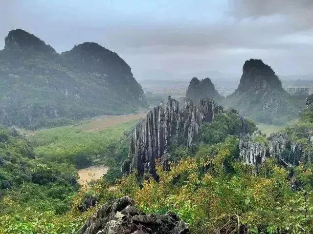 (5)【百花齐放 】美翻了!在广州附近的一个世外桃源,只有走过这些地方才算是度过了春天!-户外活动图-驼铃网