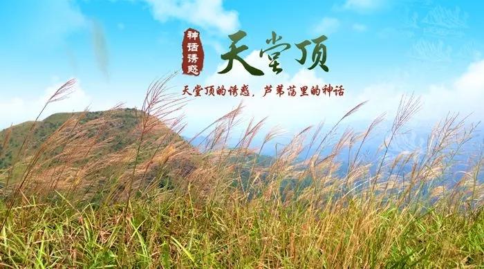 (7)会员日特惠价38元|天堂顶-从化千米高山十登之一-户外活动图-驼铃网