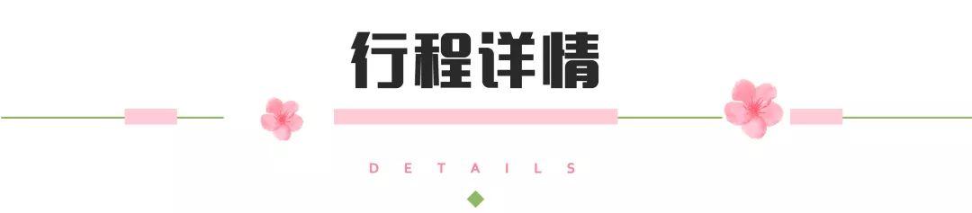 (15)2020年【遇见.樱花-花季贵州】-户外活动图-驼铃网