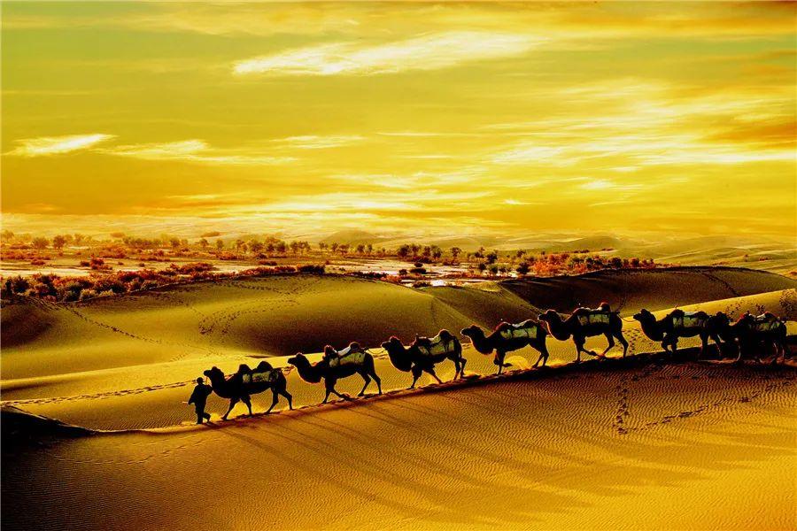(49)2020新疆是个好地方  昆仑之恋—印象南疆12日深度游 --户外活动图-驼铃网