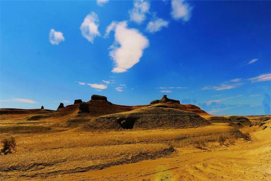 (23)2020新疆是个好地方    绝摄金秋—喀纳斯赏秋8日深度游-户外活动图-驼铃网