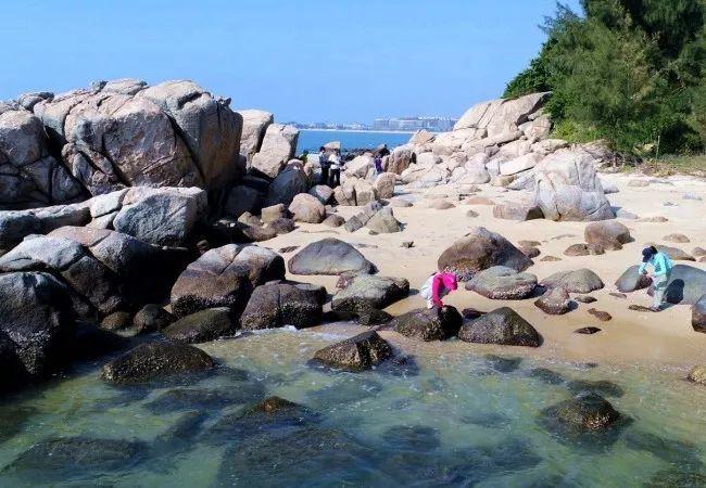 (11)【7月5日周日】惠东海螺角海岸线徒步穿越!-户外活动图-驼铃网