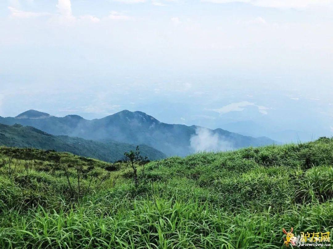 (1)8.16号周日惠州罗浮山徒步穿越,邂逅绿色草甸,航拍-户外活动图-驼铃网