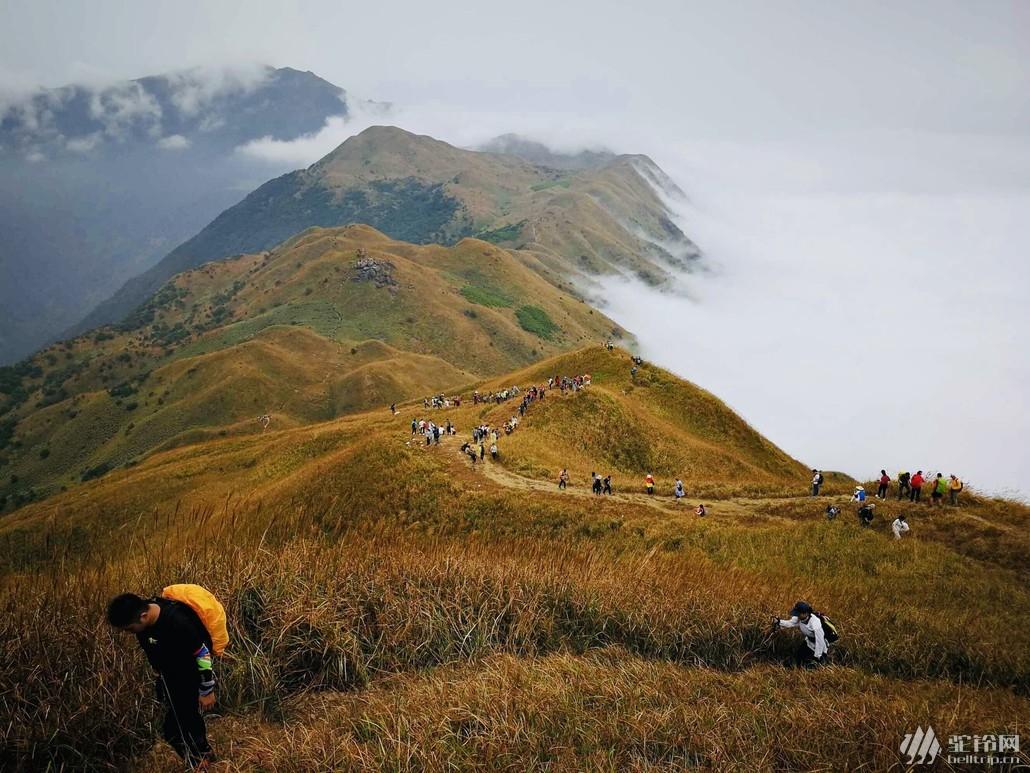 (8)惠州大南山大草坡穿越、满山遍野芦苇荡下摄影、云中漫步斧头石、-户外活动图-驼铃网