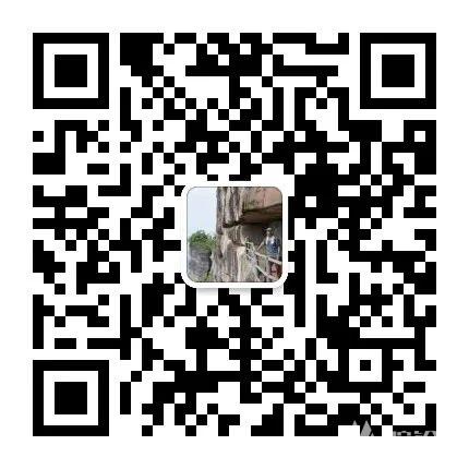 (16)【南粤寻秋】美爆了!金秋银杏,金灿灿千亩银杏林,雄阔万山朝王-户外活动图-驼铃网