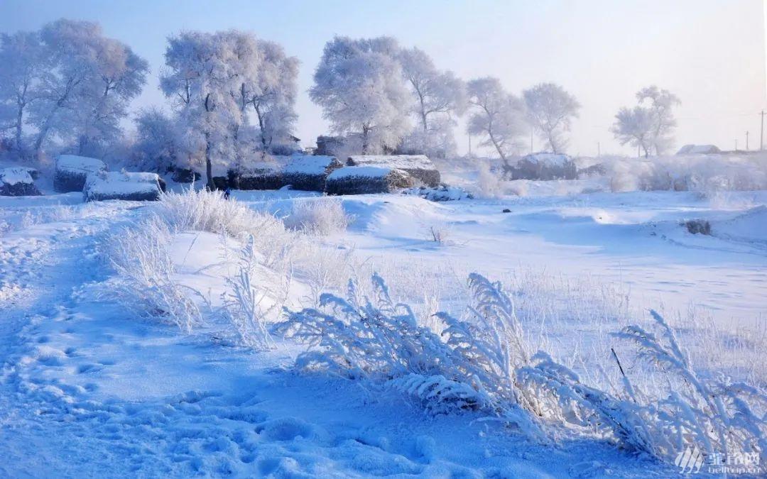 (31)塞北雪国 | 坝上雪原 一号风景大道 冬奥滑雪小镇 暖水魔界 达里诺尔冬捕 热河行宫 八天行摄穿越雪原深度体验之旅-户外活动图-驼铃网