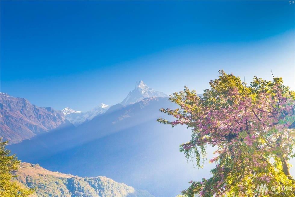 尼泊尔a3