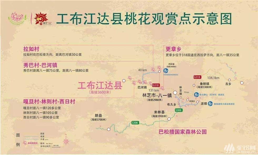 (4)林芝桃花行-户外活动图-驼铃网