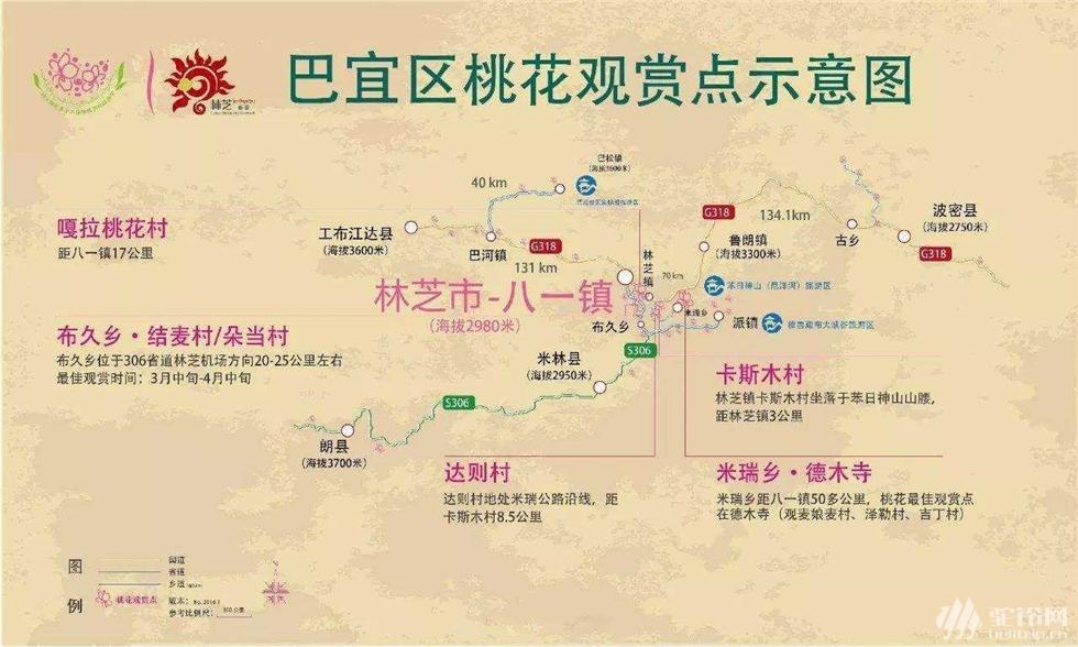 (6)林芝桃花行-户外活动图-驼铃网