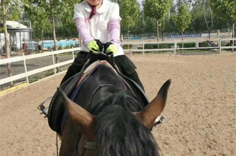 (10)北京亲子户外马术体验-户外活动图-驼铃网